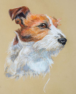 Original pet portraits, handdrawn pastel by experienced professional artists